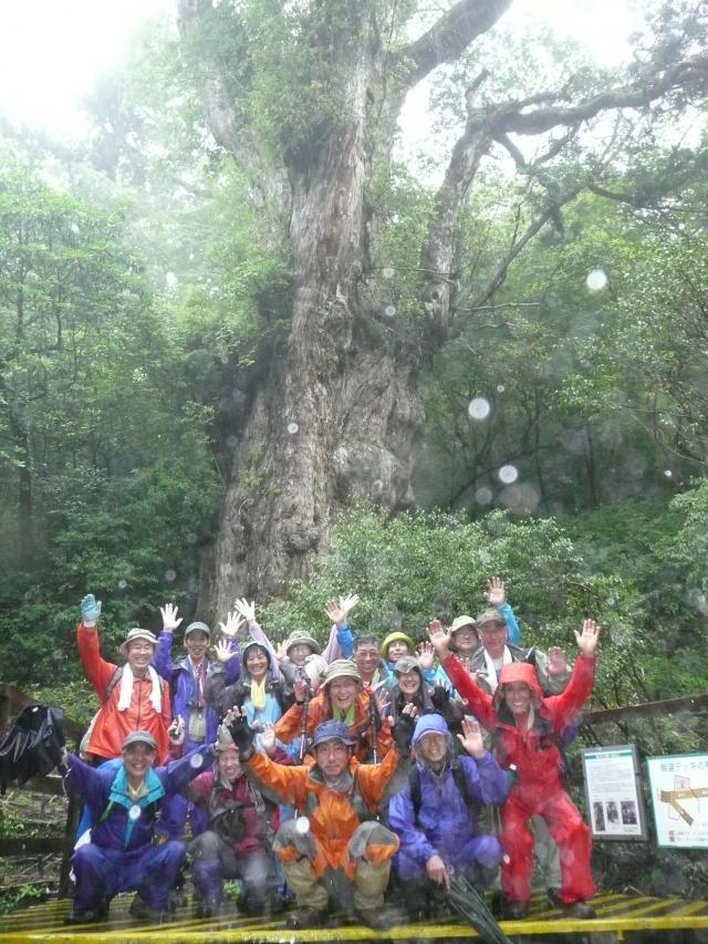 2010.06.12.屋久島 縄文杉