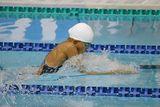 十日町市水泳協会